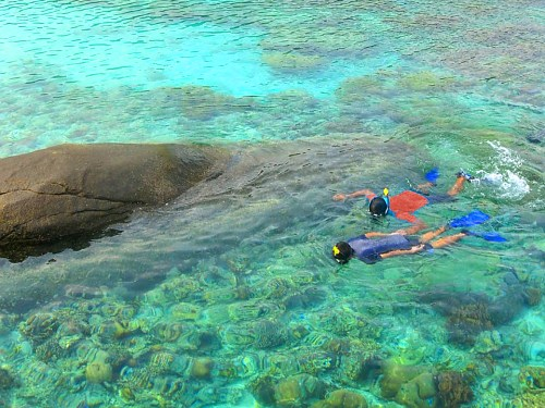 Snorkeling alle Anambas